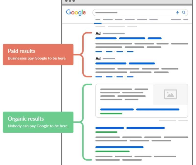 SEO MARKETING VS SEM MARKETING ?  WHAT GROWS YOUR BUSINESS MORE?